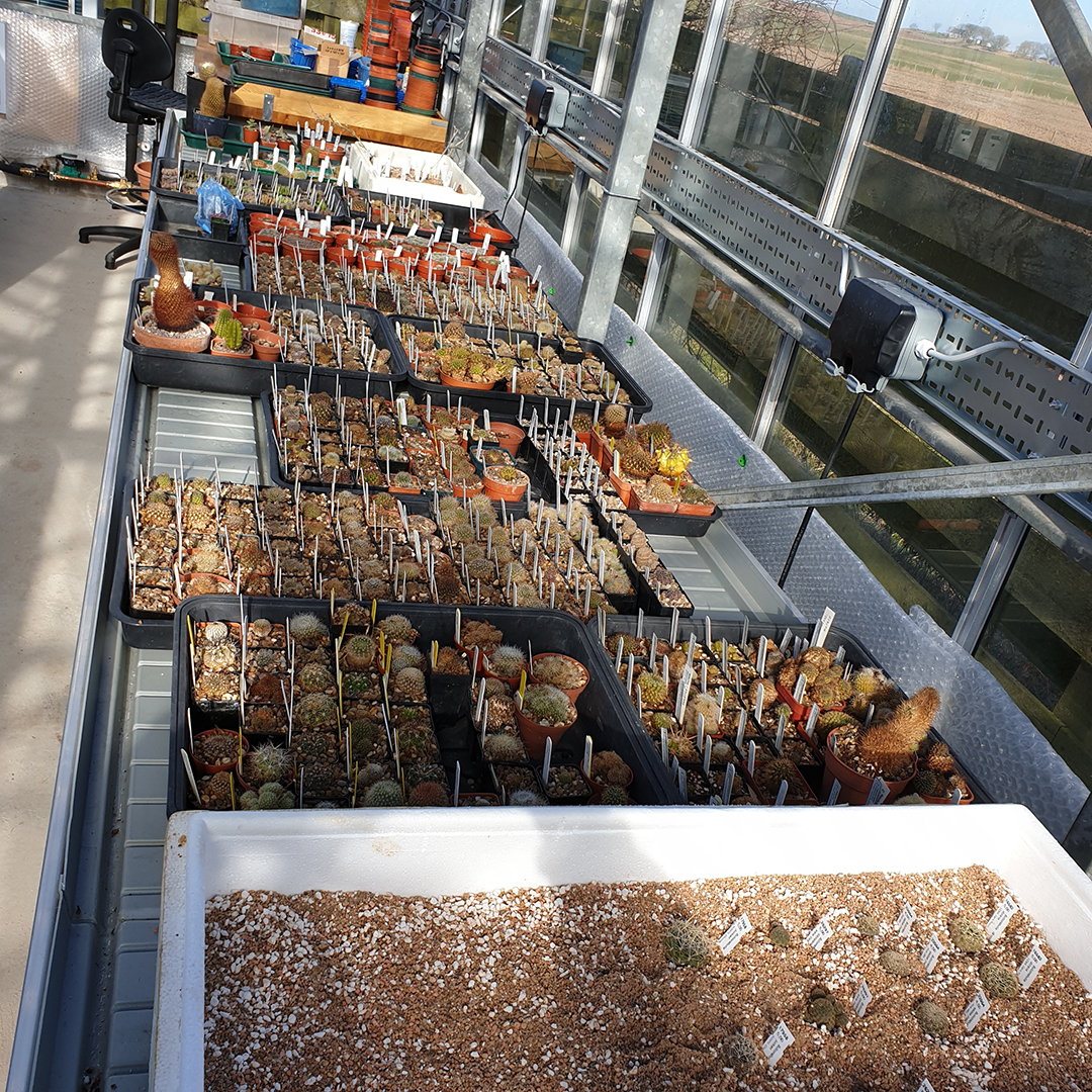 The propagation bench
